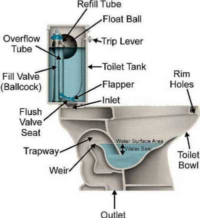 How Does A Toilet Work That You Need To Know