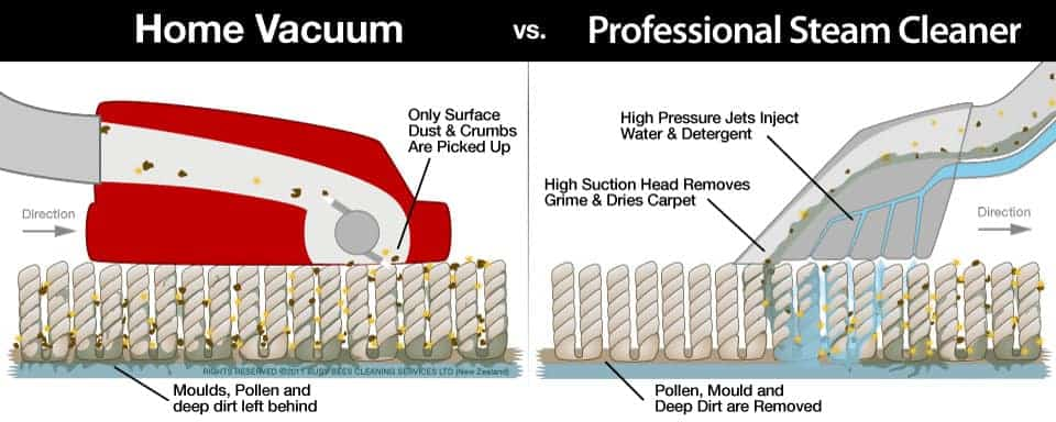 6-steps-to-professional-carpet-cleaning-services-in-Huntington-Beach-CA