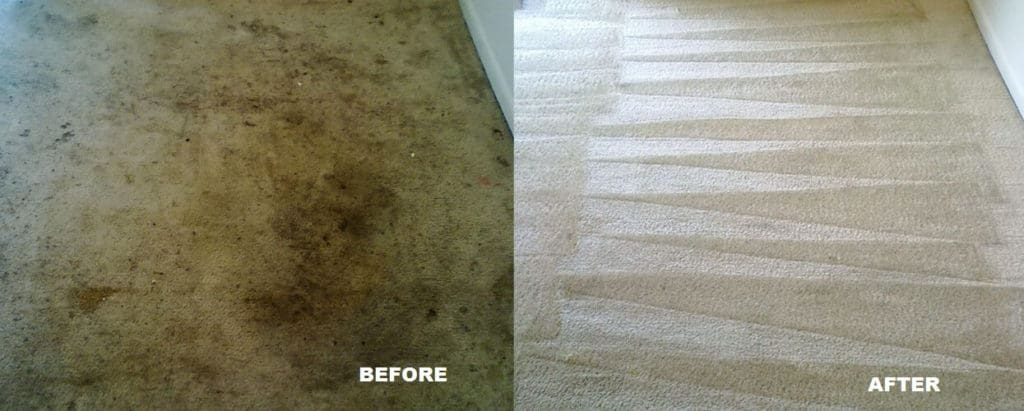 BEFORE-AND-AFTER-Vacuum-1024x411