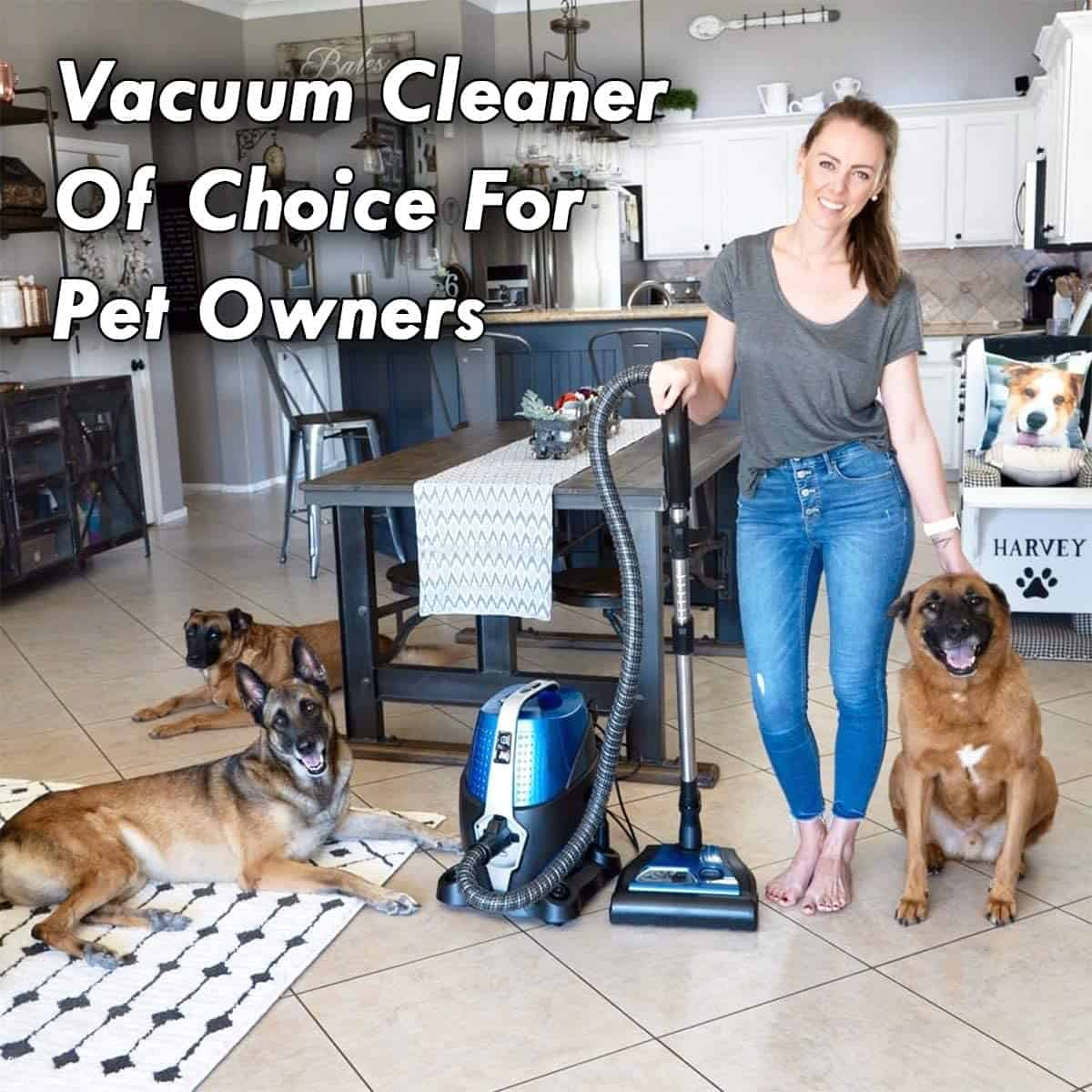 Best Water Filtration Vacuum For Pets: Sirena Pet Pro