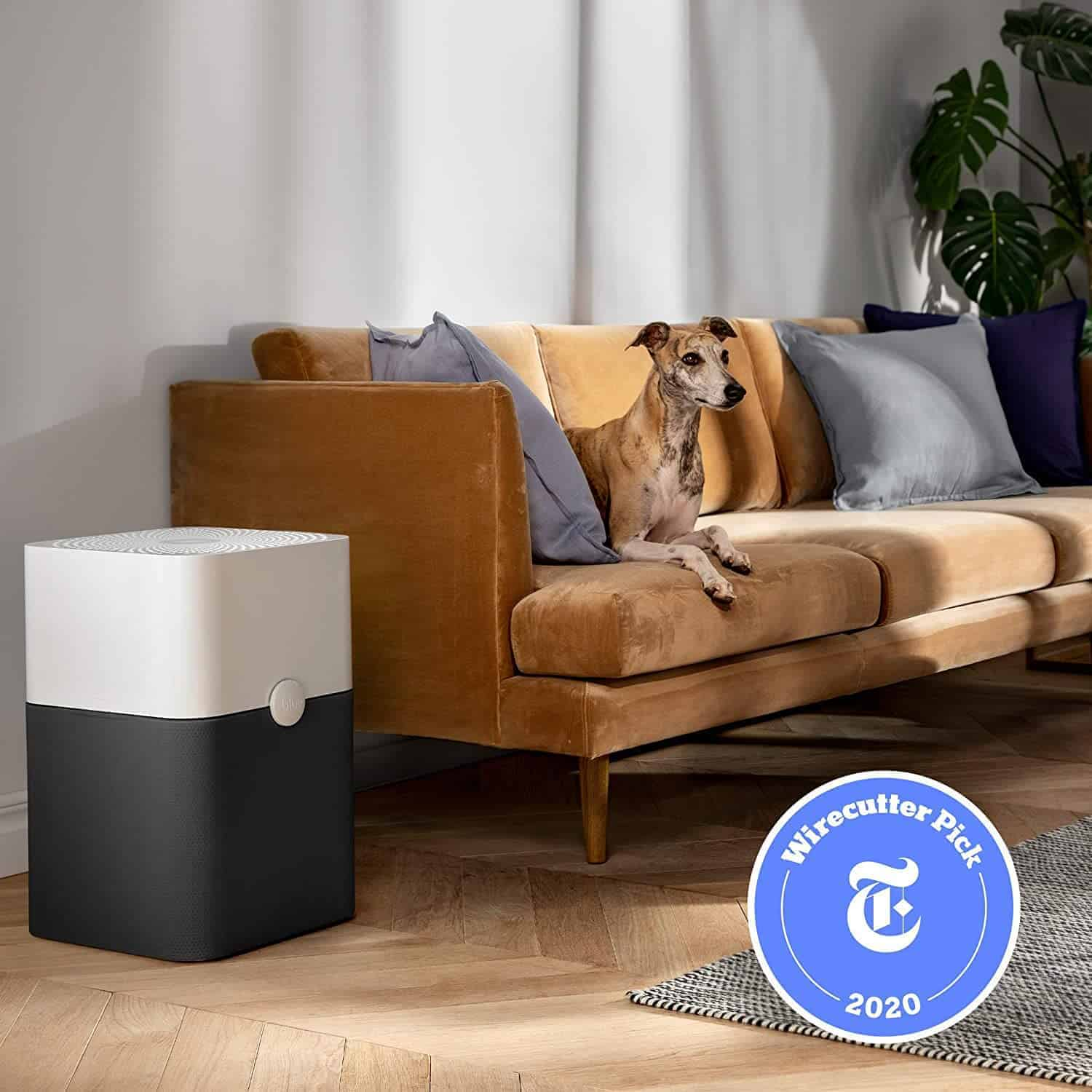 Best air purifier for allergies: Blue Pure 211+