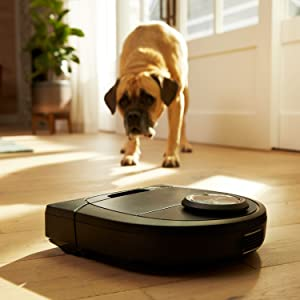 Best robot vacuum for pet hair (dogs, cats): Neato Botvac D5