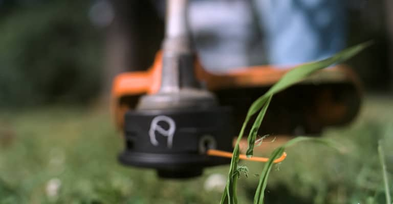 Best lightweight weed eater buyers guide what to know before you buy?
