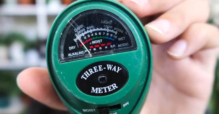 Best Soil Moisture Meter | Your Watering Sensor what to know before you buy